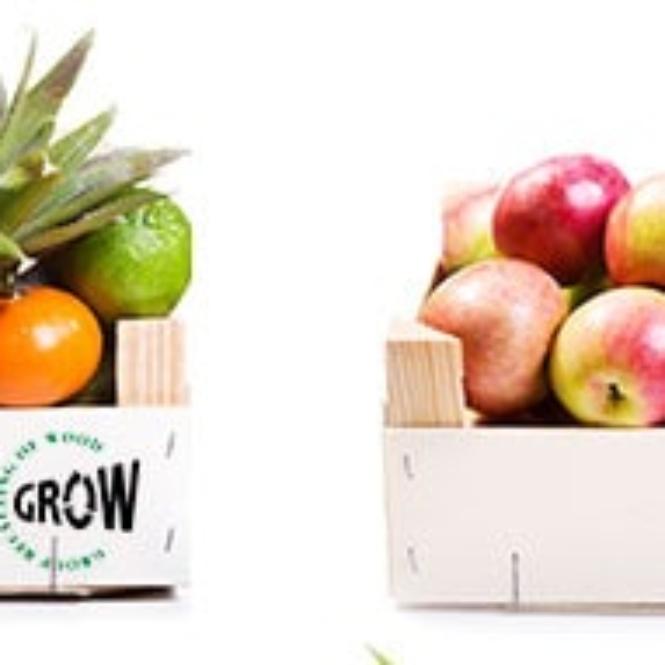 grow_international_1